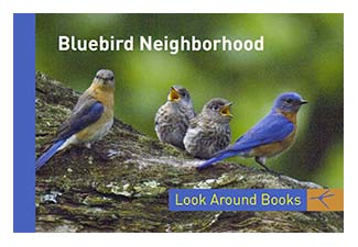 Bluebird Neighborhood.  Tony King's Look Around Books.  3.75 x 2.5 inches.  48 pages.  $3.50 retail.