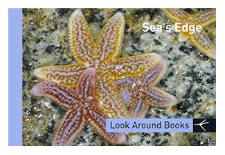 Sea's Edge. Tony King's Look Around Books.  3.75 x 2.5 inches.  48 pages.  $3.50 retail.