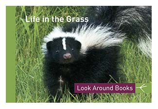 Life in the Grass.  Tony King's Look Around Books.  3.75 x 2.5 inches.  48 pages.  $3.50 retail.