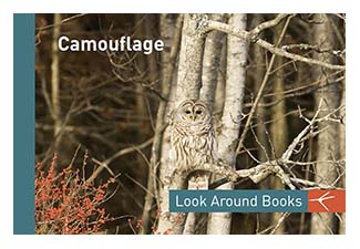 Camouflage.  Tony King's Look Around Books.  3.75 x 2.5 inches.  48 pages.  $3.50 retail.