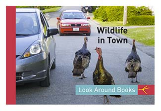 Wildlife in Town.  Tony King's Look Around Books.  3.75 x 2.5 inches.  48 pages.  $3.50 retail.